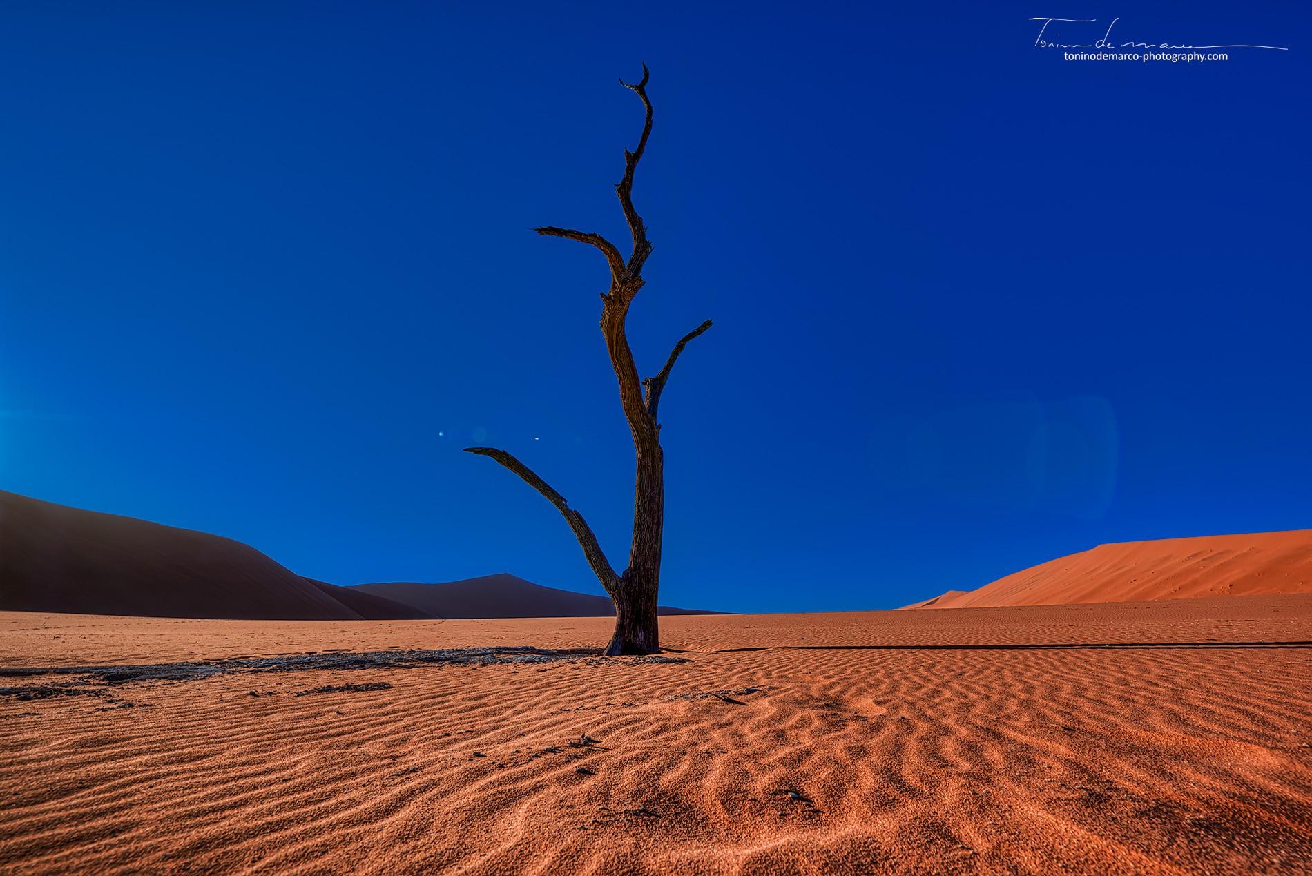 Landscape_Namibia_002