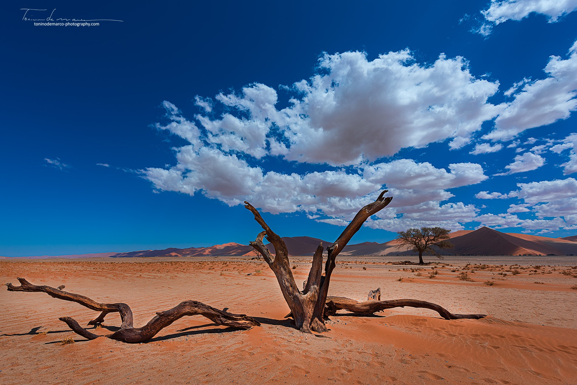Landscape_Namibia_012