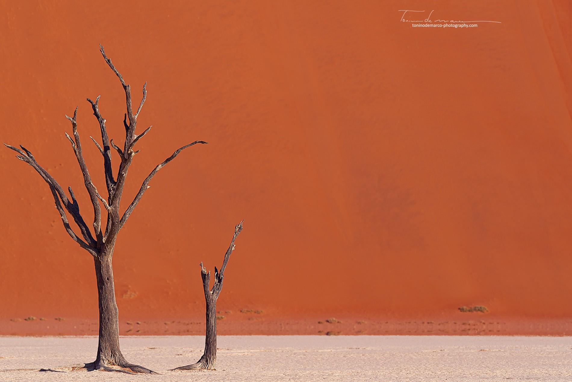 Landscape_Namibia_014