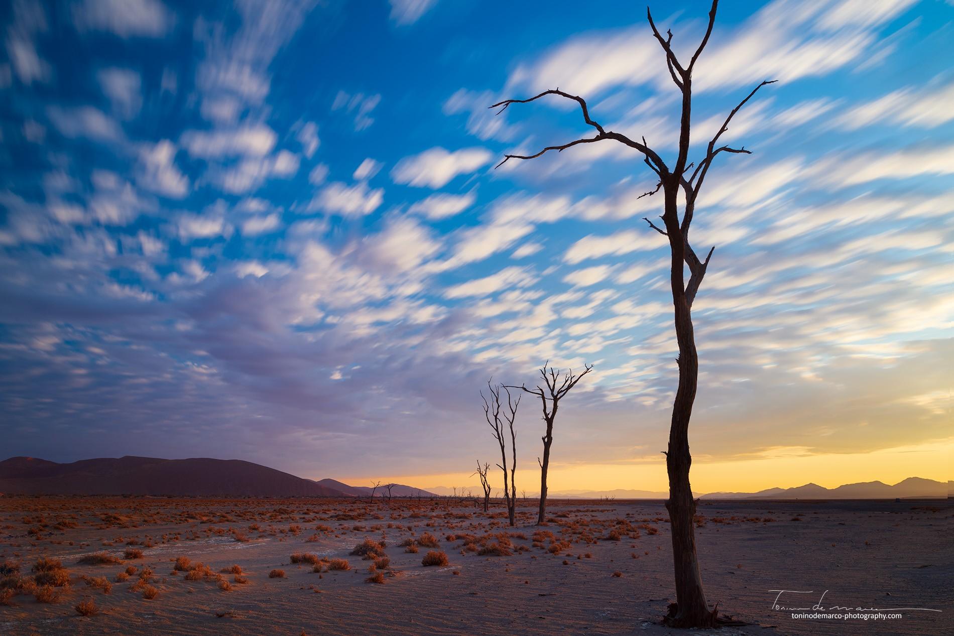 Landscape_Namibia_019