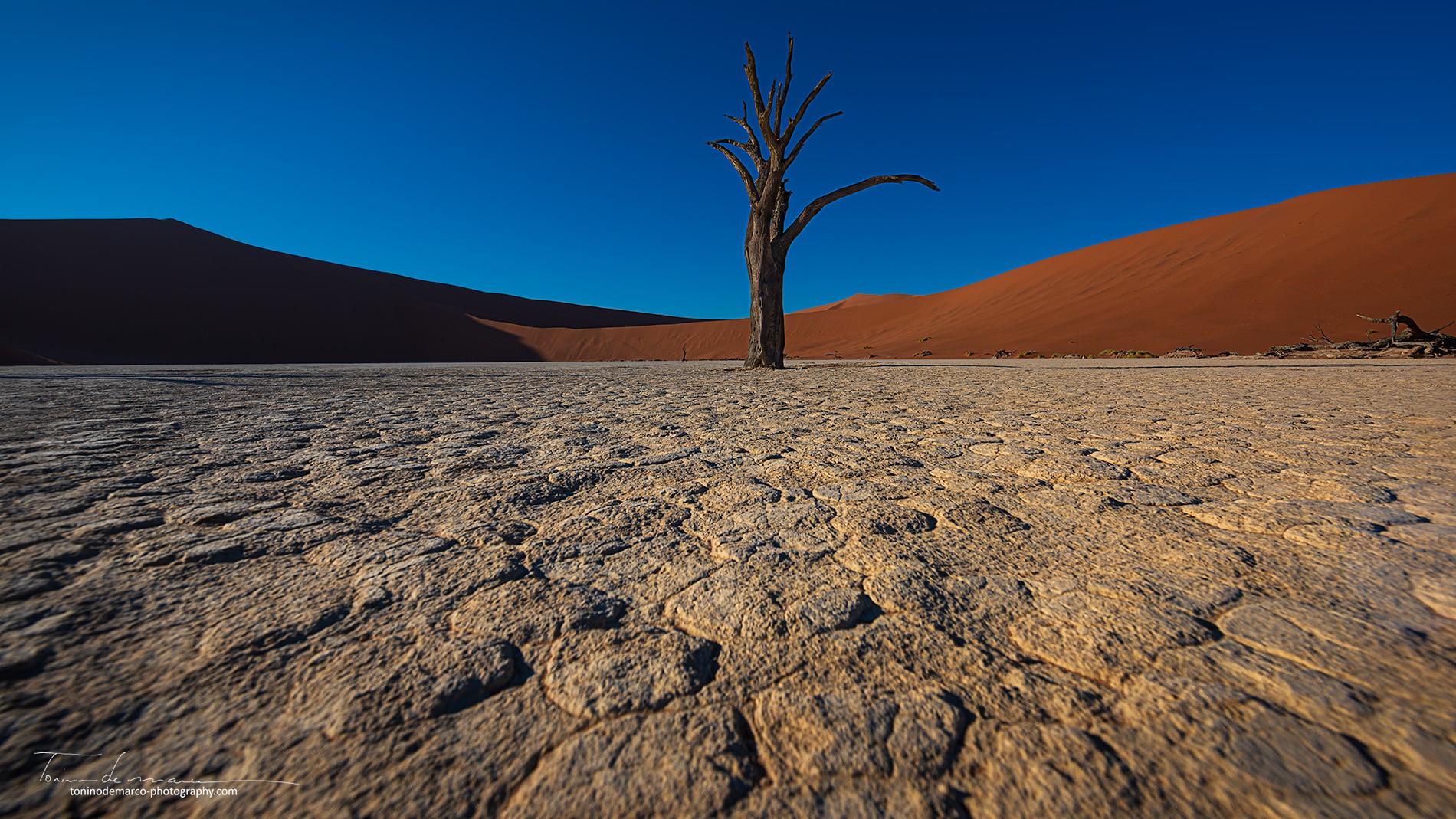 Landscape_Namibia_021