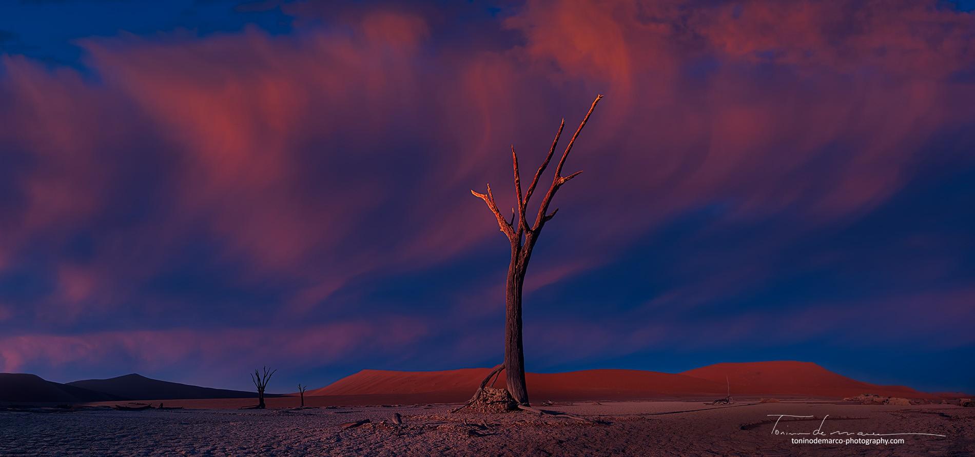 Landscape_Namibia_023